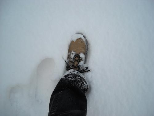 foot756-.JPG