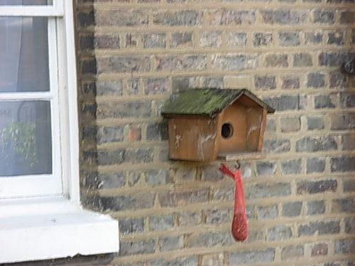 Bird Houses_045.JPG