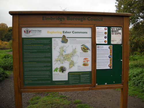 Elmbridge_2171.JPG